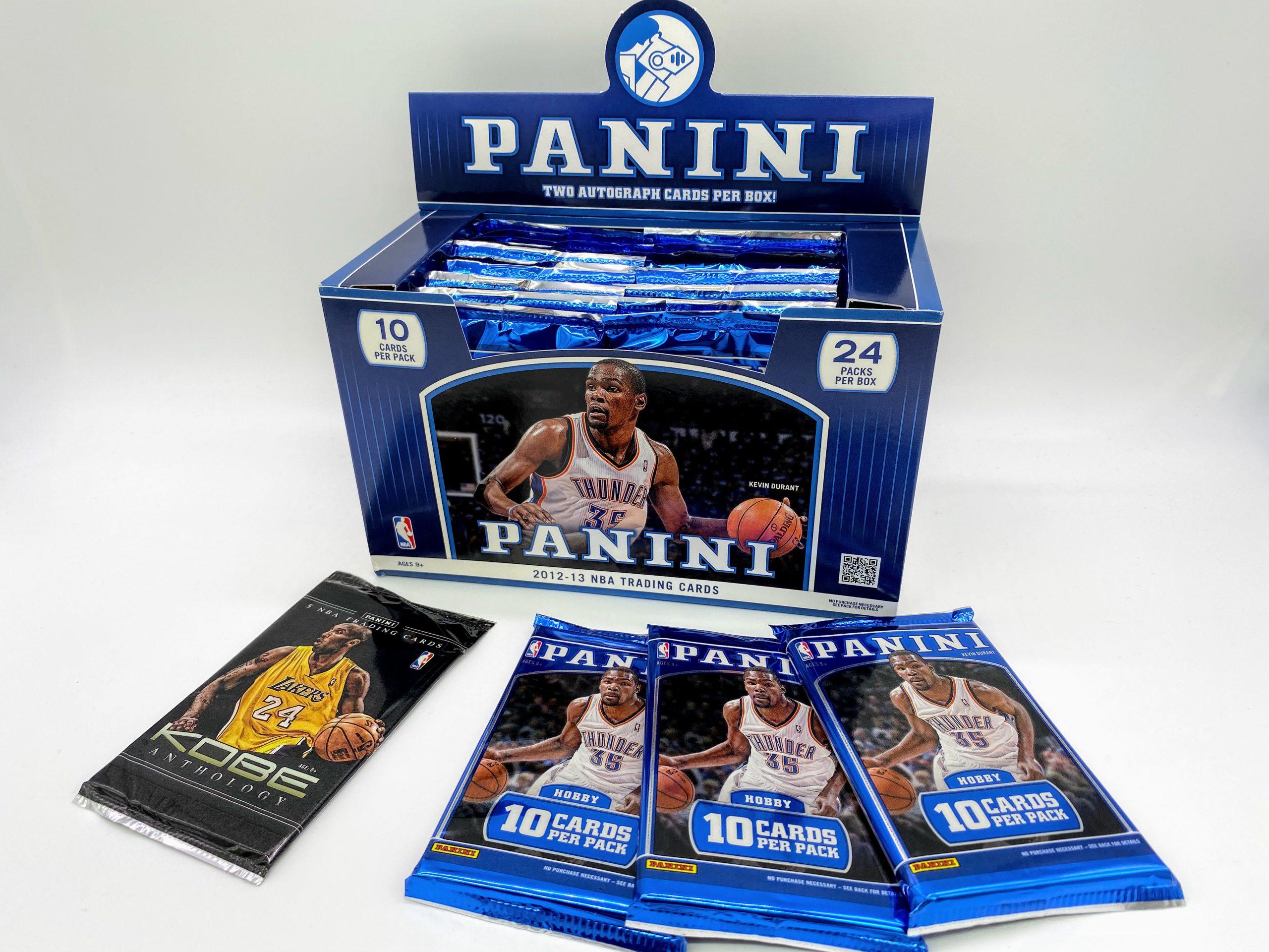 PANINI-2012-2013